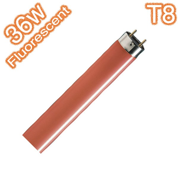 T8 G13 36w Red Coloured Fluorescent Linear Tube 240v Globe